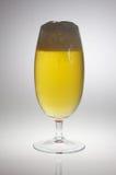 Cálice da cerveja com cerveja no luminoso Fotografia de Stock