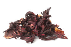 Cálices secados do hibiscus Foto de Stock Royalty Free