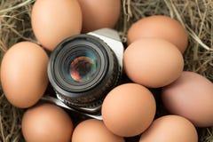 Cámara de la película con los huevos imagen de archivo