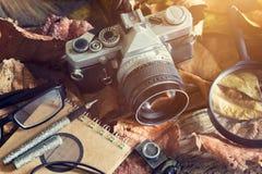 Cámara de la película del vintage con polvo en la hoja seca y de madera en naturaleza Imagen de archivo libre de regalías