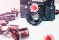 Cámara de la película del vintage, flores rosadas y película en el fondo blanco Imagenes de archivo