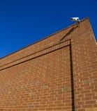 Cámara de seguridad en la pared Imagenes de archivo
