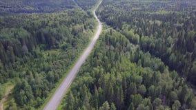Cámara de visión aérea del bosque verde de los tops mezclados densos del árbol de árboles y de abedules de pino clip Visión aérea Fotos de archivo libres de regalías