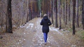 Cámara lenta, cinematics la muchacha está caminando a lo largo del camino en el bosque, la primera nieve almacen de metraje de vídeo