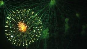 Cámara lenta de la celebración de los fuegos artificiales en la noche metrajes