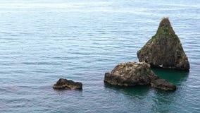 Cámara lenta de la escena de la naturaleza con el océano Italia Gaviotas comunes que vuelan en roca almacen de metraje de vídeo