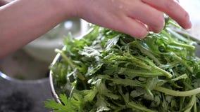 Cámara lenta de la mujer que lava la verdura china en fregadero de cocina almacen de video