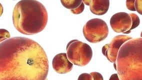 Cámara lenta de los melocotones aislada Frutas frescas en el aire