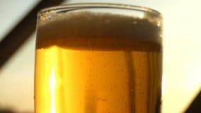 Cámara lenta de los rayos solares de la cerveza hermosa de la reflexión metrajes