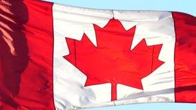 Cámara lenta del vuelo canadiense de la bandera en astas de bandera almacen de video