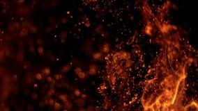 Cámara lenta estupenda de las chispas del fuego almacen de video