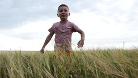 Cámara lenta un niño pequeño divertido que corre a través de un campo de trigo almacen de video