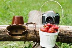 Cámara vieja con una cesta de fresas Foto de archivo
