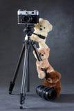 Cámara y grupo de osos de peluche aislados Fotos de archivo libres de regalías