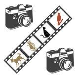 Cámara y película Foto de archivo libre de regalías