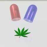 Cápsula com folha da marijuana ilustração royalty free