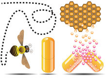 Cápsula de la abeja de la miel Imagenes de archivo
