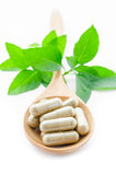 Cápsulas de la medicina herbaria en cuchara de madera Fotos de archivo libres de regalías