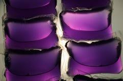 Cápsulas de lavagem violetas Imagens de Stock