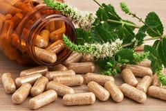 Cápsulas de medicina natural Imagen de archivo