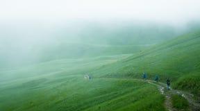 Cárpatos de niebla Imagen de archivo libre de regalías