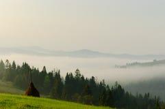 Cárpatos hermosos con una montaña de niebla Imagenes de archivo