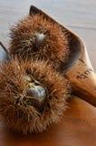 Cáscara abierta de la castaña en la tabla de madera Fotografía de archivo libre de regalías