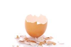 Cáscara de huevo Imágenes de archivo libres de regalías