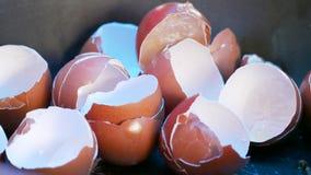 Cáscara de huevo del pollo imágenes de archivo libres de regalías
