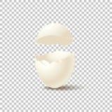 Cáscara de huevo vacía quebrada en fondo transparente Elemento realista del diseño del vector libre illustration