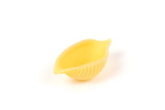 Cáscara de las pastas de Conchiglie Imagen de archivo libre de regalías