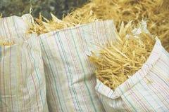 Cáscara de maíz Fotos de archivo libres de regalías
