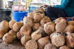 Cáscara del coco del corte del granjero Imagen de archivo