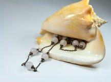 Cáscara del mar con un collar Fotos de archivo