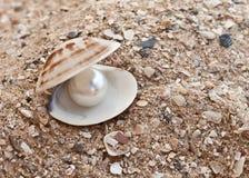 Cáscara del mar con una perla en la arena Imagen de archivo