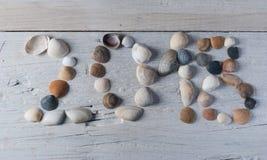 Cáscara del mar en los tableros blancos, Imagenes de archivo