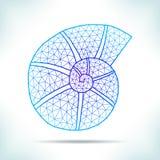 Cáscara geométrica Imagenes de archivo