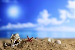 Cáscara y vela de la arena en el mar Fotos de archivo