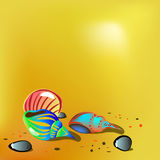 Cáscaras brillantes en la arena Ilustración del vector Imagen de archivo