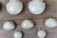 Cáscaras de concha de peregrino blancas de la arcilla Fotografía de archivo