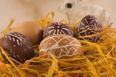 Cáscaras de huevo de Pascua con el conejo Fotografía de archivo libre de regalías