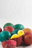 Cáscaras de huevo de Pascua con un polluelo Fotos de archivo
