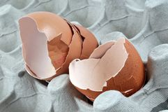 Cáscaras de huevo quebradas en un cartón de huevos imágenes de archivo libres de regalías