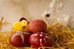 Cáscaras de huevo teñidas de Pascua con un rabit y un polluelo Imagen de archivo libre de regalías