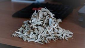 Cáscaras de la semilla fotografía de archivo