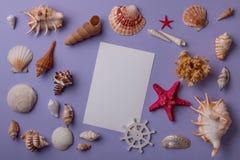 Cáscaras de la tarjeta de papel/de la invitación y del mar Fotografía de archivo libre de regalías