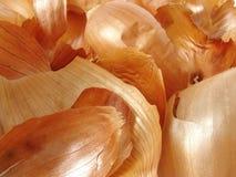 Cáscaras de las cebollas Fotografía de archivo