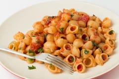Cáscaras de los macarrones con la salsa de tomate del arrabbiata Foto de archivo libre de regalías