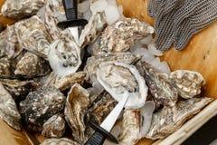 Cáscaras de ostras y un cuchillo en una cesta en el hielo Fotografía de archivo libre de regalías
