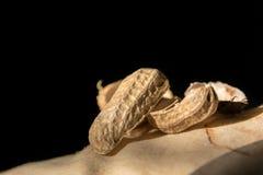 Cáscaras del cacahuete en la opinión del primer Fotografía de archivo